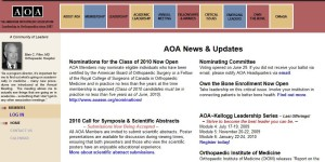 The American Orthopaedic Association-2009